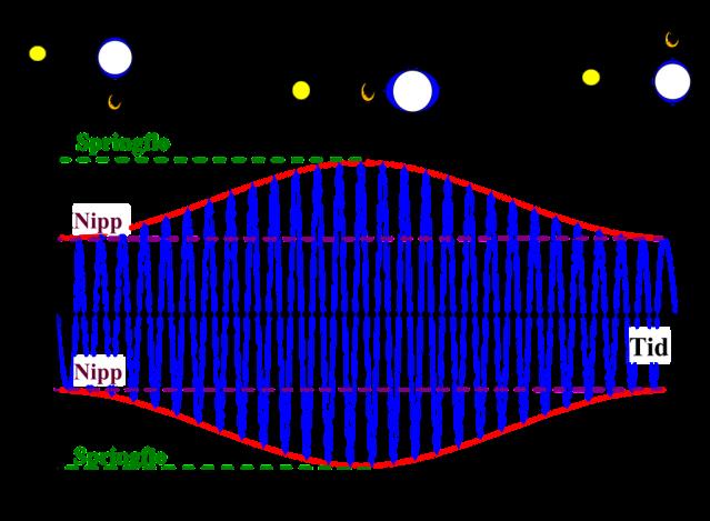 Tidevann-fig3-1
